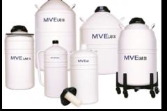 Chart-MVE-Lab-Series